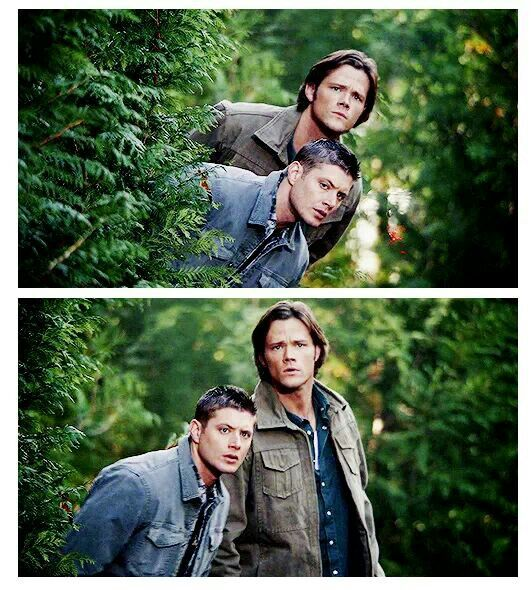 Wild Winchesters appear!