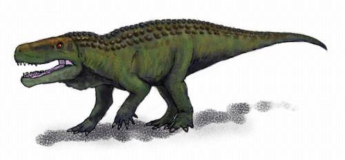 Extinct Creatures」: バトラコトムス Batrachotomus