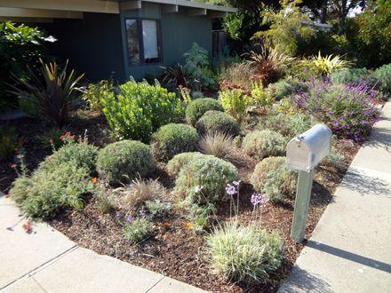 all organic fine gardening and garden maintenance in bay area taproot garden design fine
