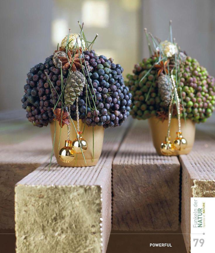 Beeren,Zapfen,Gold