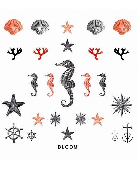 etoile de mer tatouage - Recherche Google