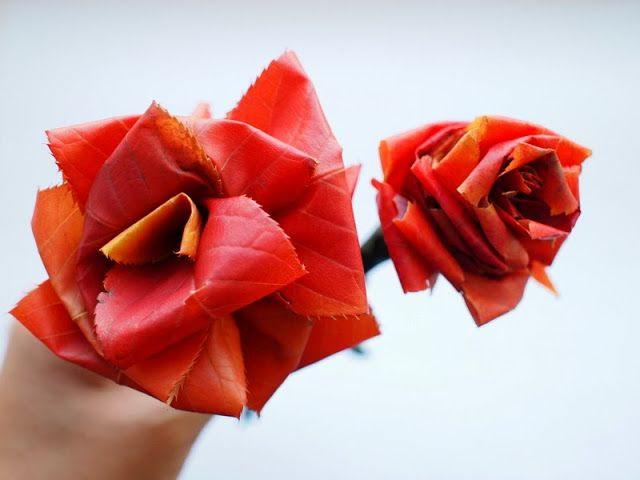 """Making """"roses"""" out of Autumn leaves!"""