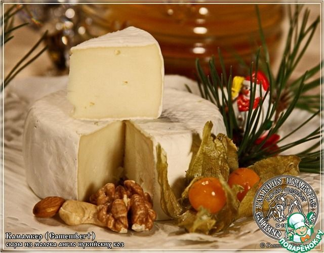 Сыр Камамбер … из козьего молока ингредиенты