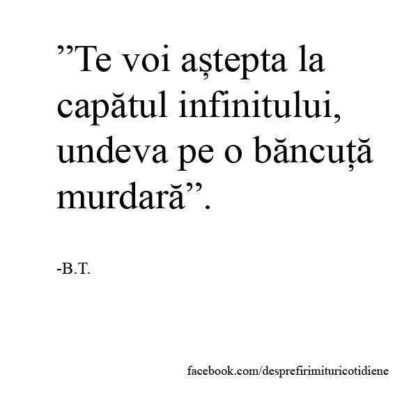 """""""Te voi aștepta la capătul infinitului, undeva pe o băncuță murdară"""". Citat iubire Despre firimituri cotidiene"""