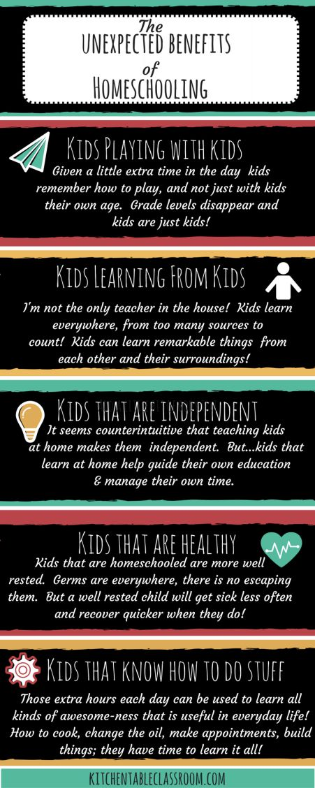 The Unexpected Benefits of Homeschooling -As new homeschoolers we looked forward to many freedoms, both academic and personal. But there have been a few unexpected benefits of homeschooling that snuck up on us that we're enjoying just the same!