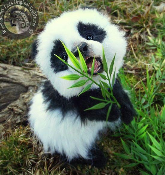23 Unglaublich süße Tierbabys, die dein Herz zum Schmelzen bringen Niemand kann dem …
