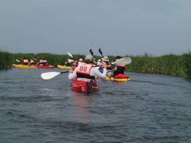 Rafting, Canyoning, Bai termale