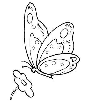 28 best printable colouring pictures images on pinterest