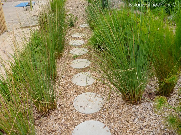 Monash Clayton Kinder playspace where we have used simple planting and steppers to create an interesting path.
