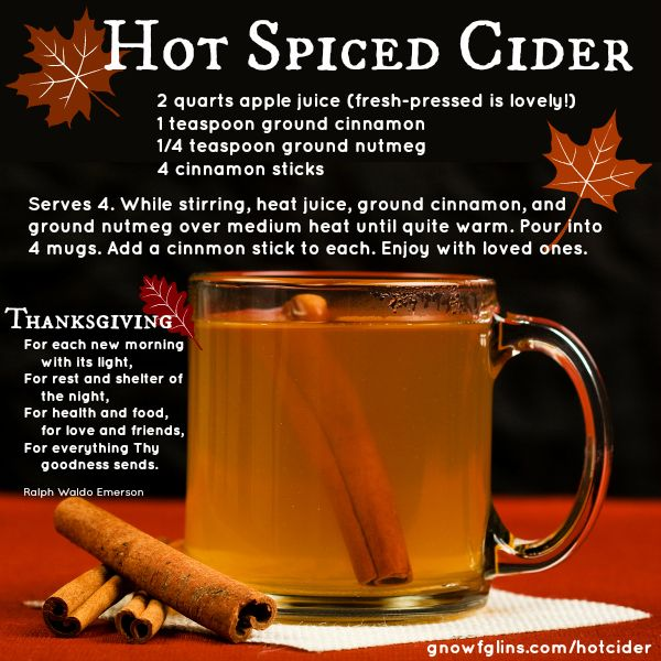 Put this simple and fragrant cider on the burner for family or friends to enjoy while you're visiting. It's easy and delicious, and especially lovely when you use fresh-pressed apples! http://gnowfglins.com/hotcider