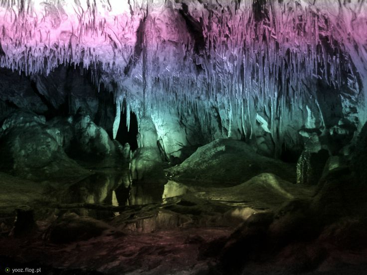 Paradise Cave (Polish: Jaskinia Raj) - Despite its small size, it is regarded as one of Poland's most beautiful caves. Its corridors lead through five chambers ornamented with stalactites, stalagmites and columns of rock created over thousands of years.