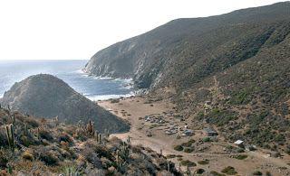 Puerto Oscuro. Canela