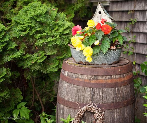 47 Best Images About Garden Vignettes On Pinterest