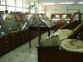 """Museu de Paleontologia e Estratigrafia """"Prof. Dr. Paulo Milton Barbosa Landim"""""""