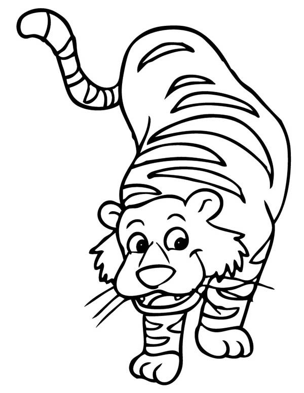 Tiger Cartoon Illustration Of A Tiger Coloring Page