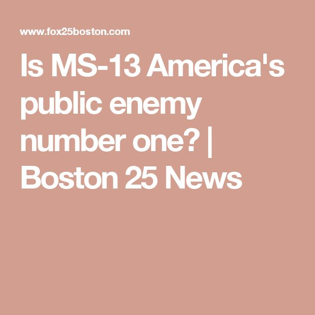 Is MS-13 America's public enemy number one? | Boston 25 News