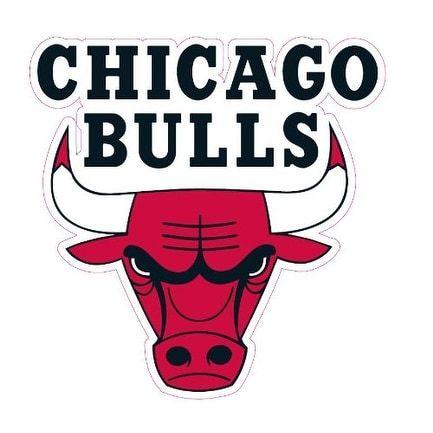 Chicago Bulls Team Auto Window Decal (12 X 10 -Inch)