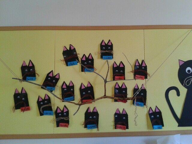 Kocky na strome