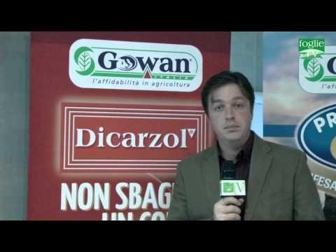 FOGLIE TV - Gowan Italia presenta  soluzioni per la difesa dell'uva da t...