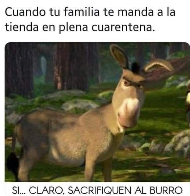 Pin By Jorge Ordonez On De Todo Un Poco In 2020 Anime Memes Funny Stupid Funny Memes New Memes
