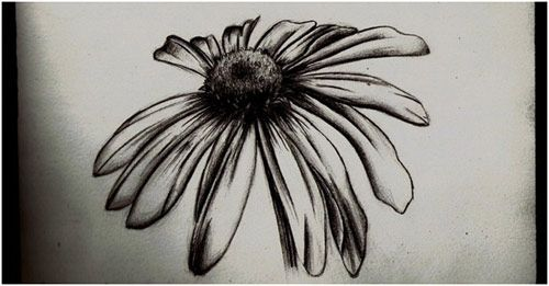 Daisy Tattoo in Bold Black
