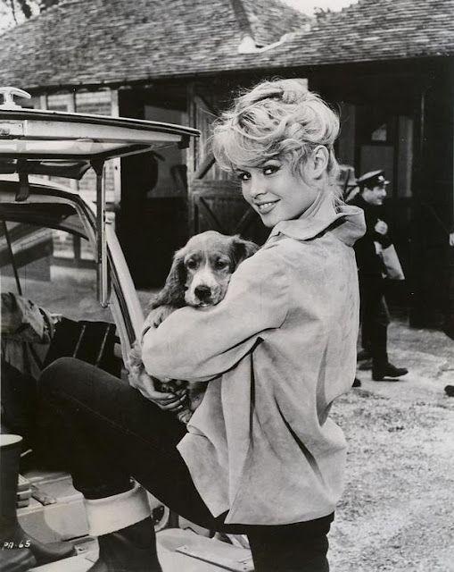 Brigitte Bardot and a puppy friend @Coveteur                                                                                                                                                                                 More