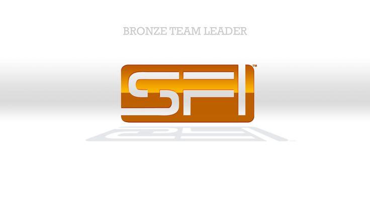 Bronze Team Leader http://www.sfi1.biz/13159520