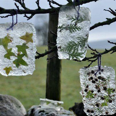 Ice Art neat idea ~P~