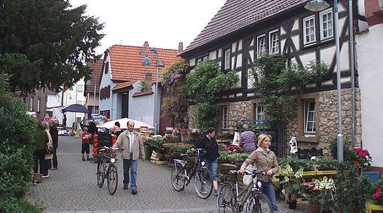 Florsheim (0:33 min from Messel)