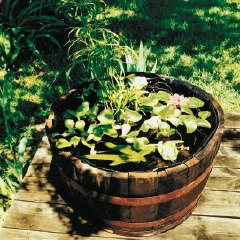 Birds And Blooms Suggestion Of A Whiskey Barrel For A Mini