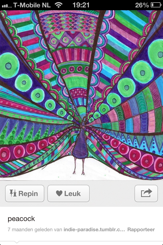 Knutselen pauw kern 6. Leerkracht tekent begin en geeft drie kleurtjes door elke leerling kleurt met die drie kleuren een veer.