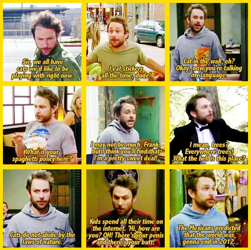 I cannot get enough of Charlie Day quotes