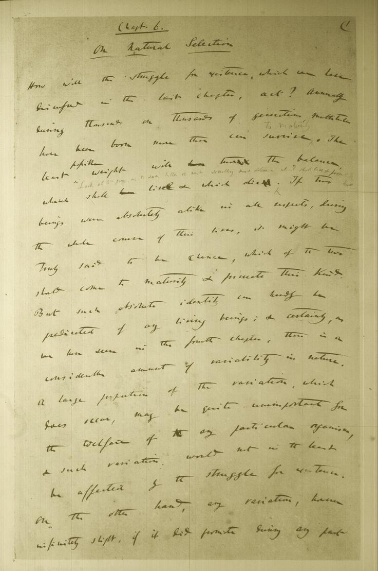 Darwin :Origin of Species manuscript