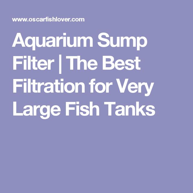 Aquarium Sump Filter | The Best Filtration for Very Large Fish Tanks