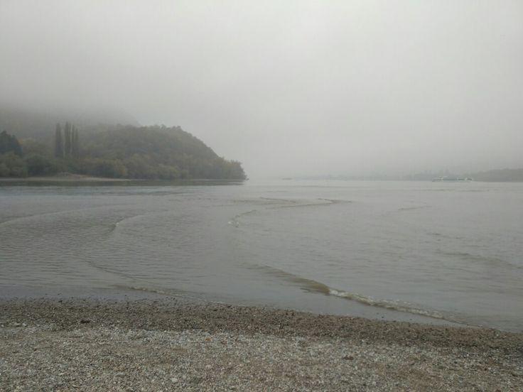 Fog on Danube