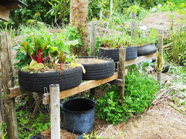 Raised bed tire garden raising tires up on rails helps for How to use old tires in a garden