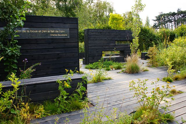 Contemporary garden with dark walls