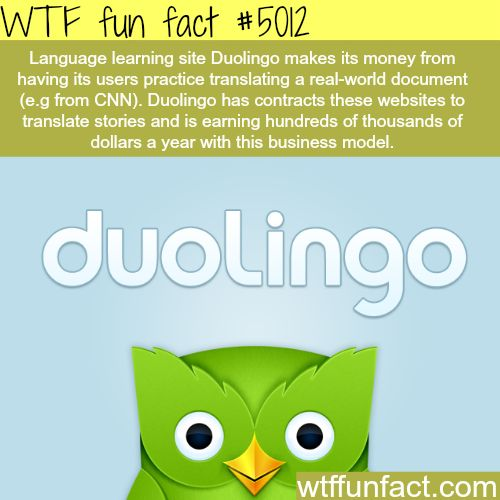 Language learning website - WTF fun facts // I love Duolingo (go try it if you haven't)