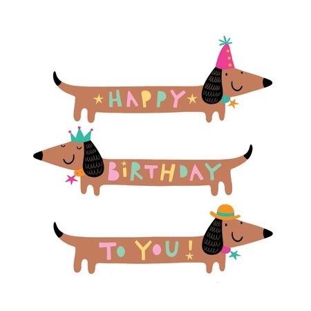 dachshund happy birthday illustration