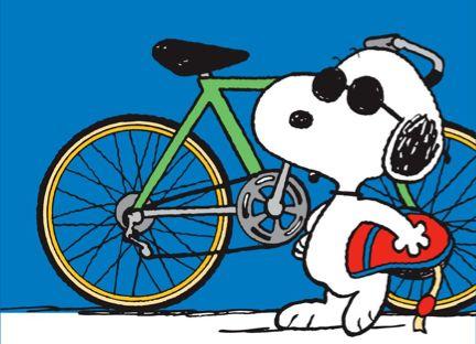 We all like to bike!