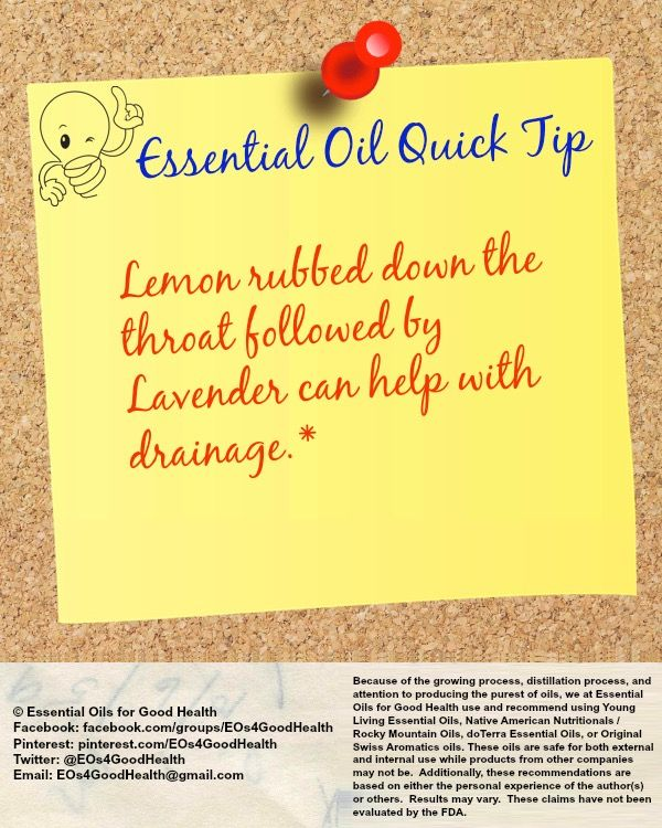Need help with sinus drainage? Try this quick tip! Check us out at Facebook.com/groups/EOs4GoodHealth or on Twitter at @EOs4GoodHealth for more information. #sinsusdrainage #essentialoils #aromatherapy