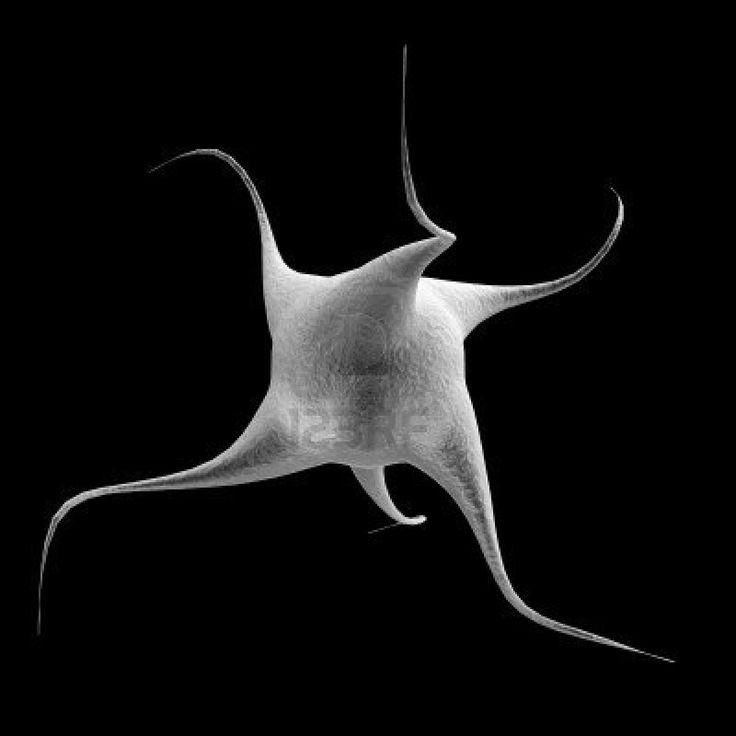 Nano Cell