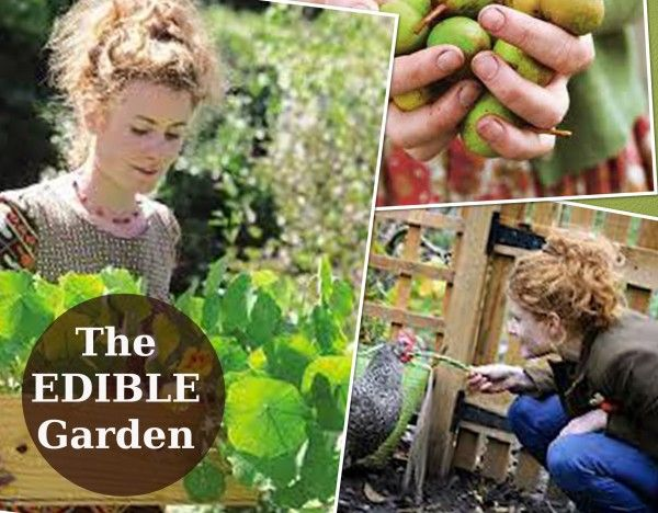 The Edible Garden with Alys Fowler ~ Watch all 6 episodes here   -----  Love it! Adore it.