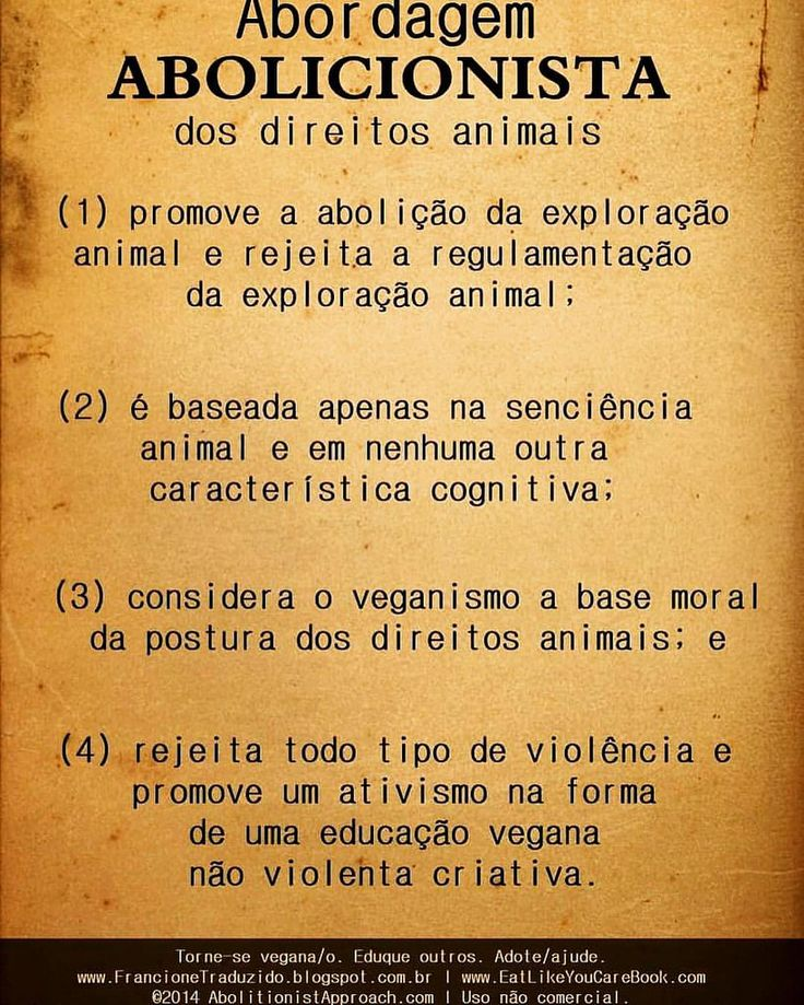 animal abuse cases essay Animal protection should be a priority for every self-respecting man what measures should be taken to prevent animal abuse animal abuse increases every year and some people can not stand it anymore so if you want to know what measures should be taken against it, continue reading this animal abuse essay steps 1 be vegans or vegetarians.