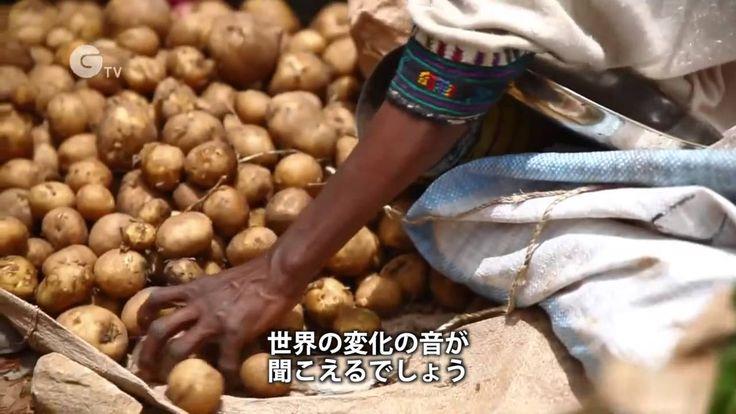 持続可能な農業を広めよう!  持続可能な農業はどんな変化をもたらすのか?素敵な音楽にのせて、エチオピアの農家の3人が、カメラ片手に農業の様子、収穫後の販売や料理、売上で子供の教材を買う様子などを見せてくれます。