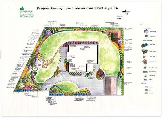 Marzenie o... - strona 52 - Forum ogrodnicze - Ogrodowisko