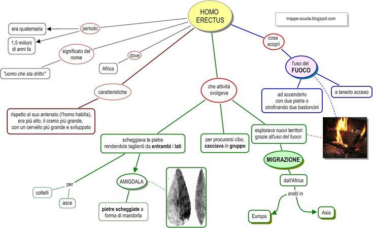 homo erectus. lui.jpg (1600×978)
