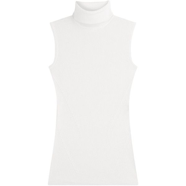 Best 25  Sleeveless turtleneck top ideas on Pinterest | Sleeveless ...