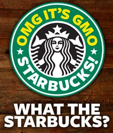 OMG_GMO_Starbucks_2014 Every dollar spent at starbucks supports gmo's, empowers monsanto and hurts grassroots gmo labeling efforts. Here's what they don't want you to know....