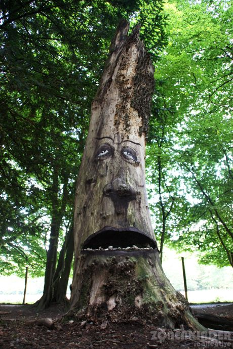 Expressive Faces Emerge From Rotting Tree Trunks - My Modern Metropolis
